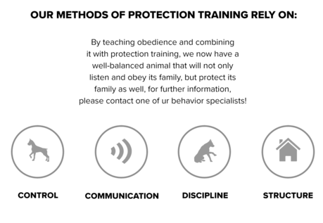 Our Methods of Protection Training